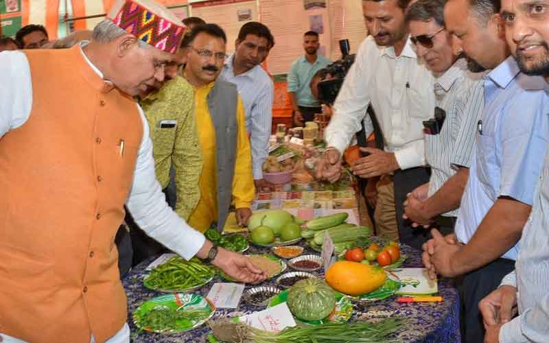 Vegetable Excellence Centers