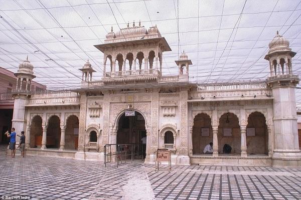 India Rat Temple