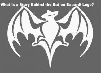 Bacardi bat logo