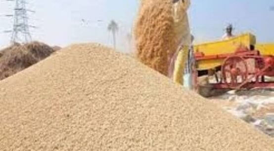 किसानों को सरकार ने दी यह सौगात